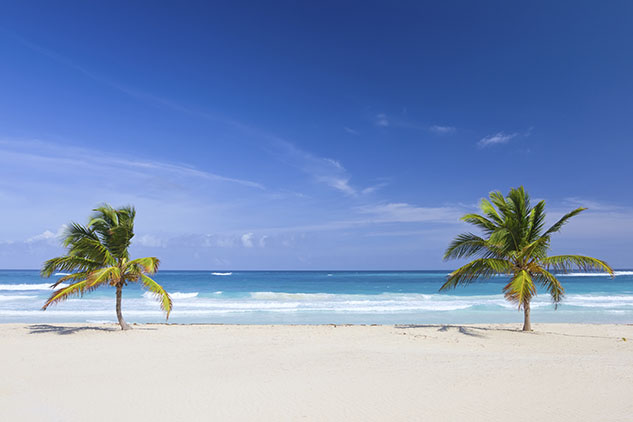 Two palm trees on the tropical beach, Dominican Republic